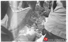Lavínové nešťastie lesných robotníkov 1956-Pátranie záchranárov - nájdenie jednej zobetí