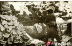 Lavínové nešťastie lesných robotníkov 1956-Pozostalí pri mohyle nadDolnou Lehotou