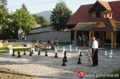 Šachový týždeň 2009-- scenéria partie sobrím šachom ajeho mladí prívrženci