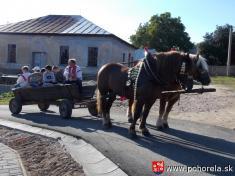 Dni obce 2013-Návštevníci využili možnosť povoziť sa navoze ...